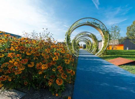 Berger Gartenbau Migros Genossenschaft Thalwil
