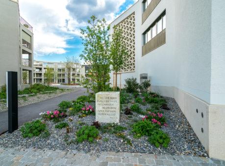 Berger Gartenbau Siedlung Stallikerstrasse Bonstetten