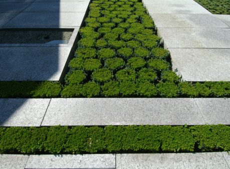 Berger Gartenbau SwissRe Adliswil