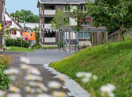 Berger-Gartenbau-Balbernstrasse-Zürich-(3)