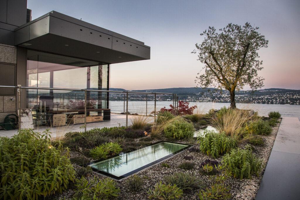 Berger Gartenbau - Terrasse mit Olivenbaum