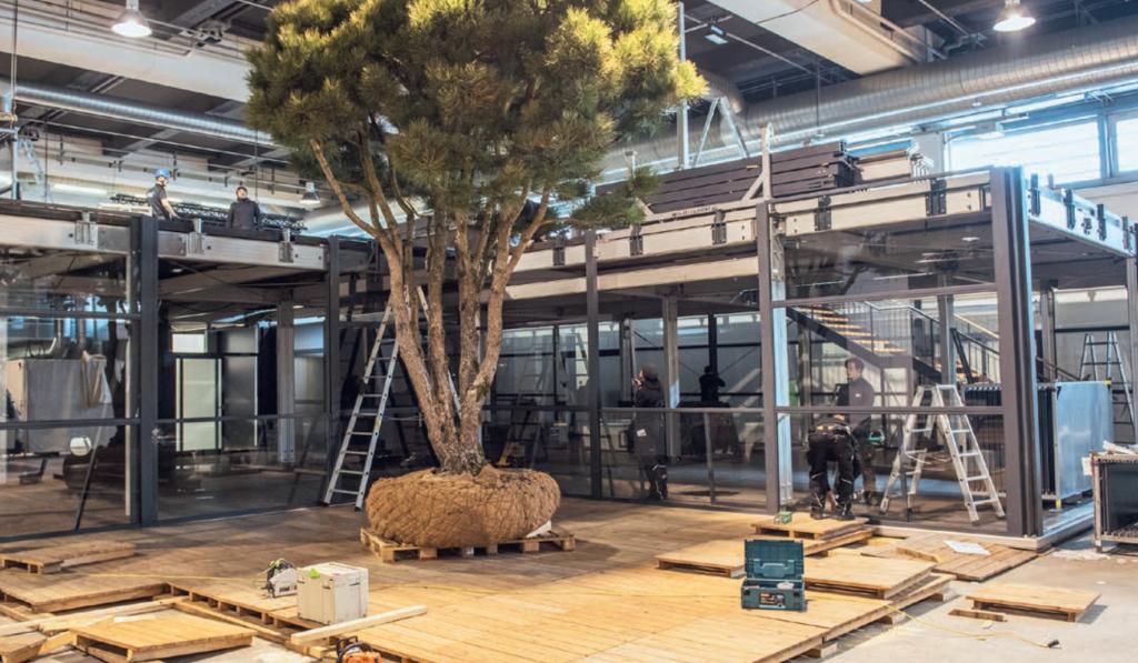 2018 war noch alles in Ordnung. Da konnten Pflanzen geliefert und auch in Schaugärten integriert werden. Foto: MCH Messe Zürich/Giardina